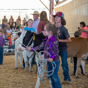Fairgrounds day_2_4H_events-62-2.jpg