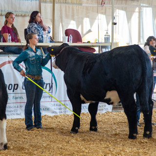 Fairgrounds day_2_4H_events-63.jpg