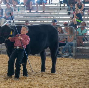 Fairgrounds day_2_4H_events-61.jpg