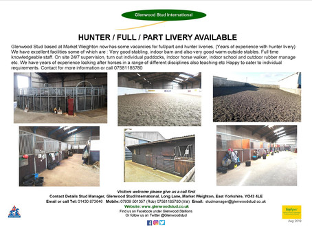 HUNTER, FULL OR PART LIVERY AVAILABLE