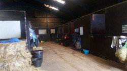 examples of some of the stables