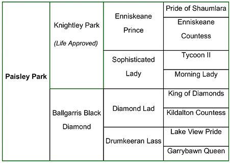 Paisley Park breeding.jpg