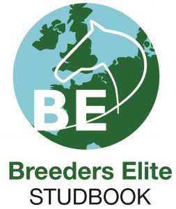 Take it 2 The Limit  -  Elite Breeders Studbook