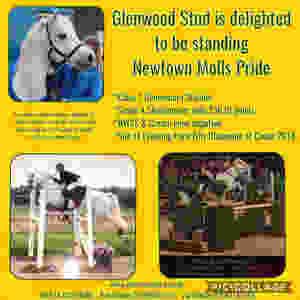 Newtown Molls Pride