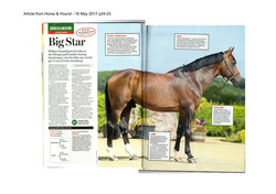 Article from Horse & Hound