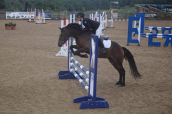 4yr old gelding competing in the UK