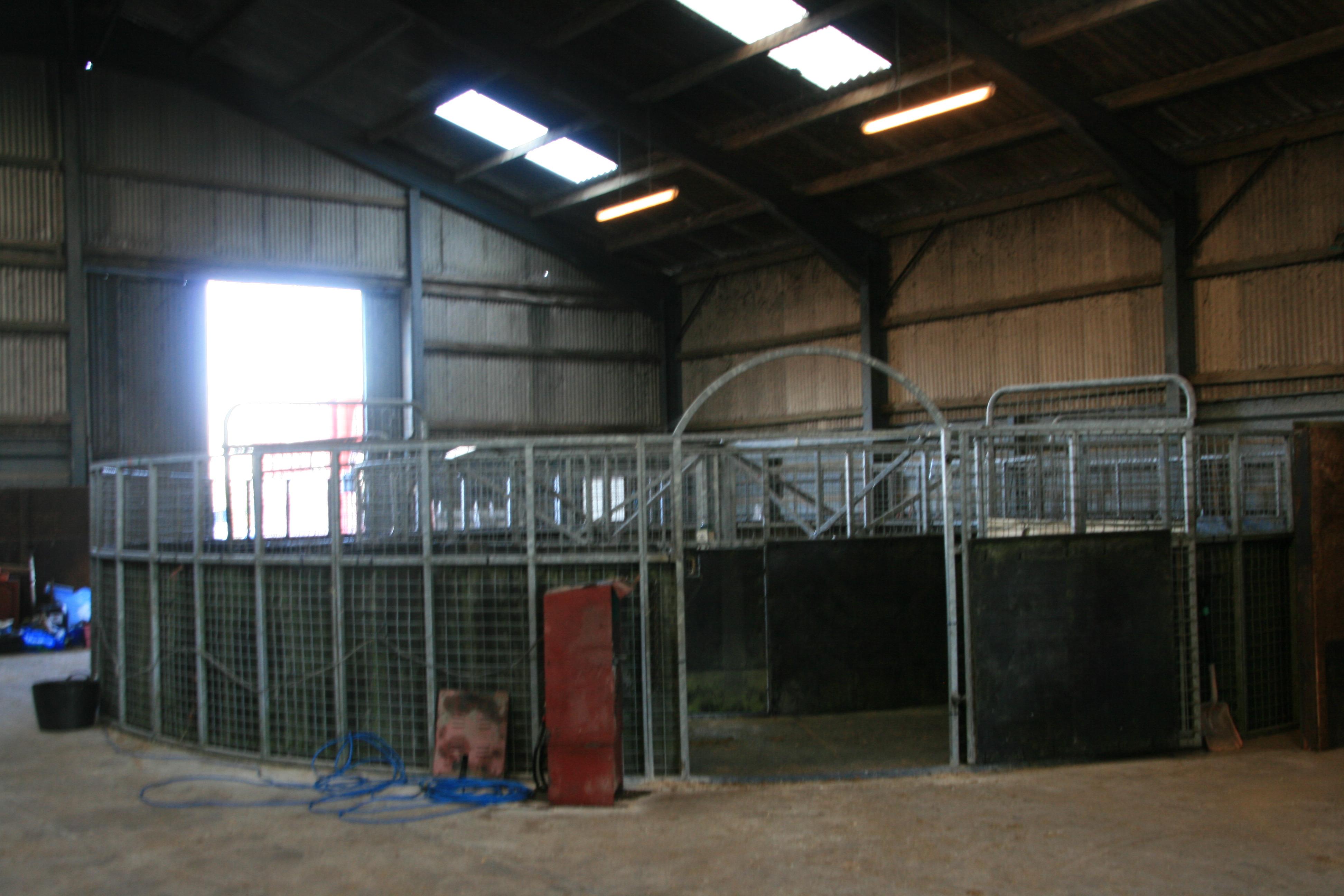 Indoor horse walker
