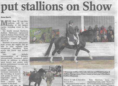 Northern Stallion Showcase 2017