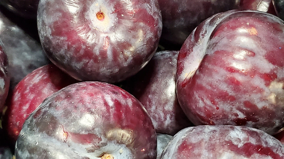 Fresh Plums Red/Black (loose) 500g