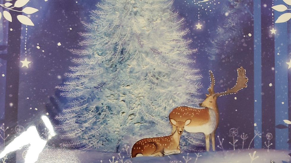 Almanac Gallery Charity Christmas Cards 8 Pack - Winter Magic