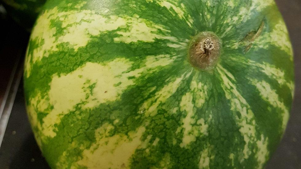 Fresh Watermelon (each)