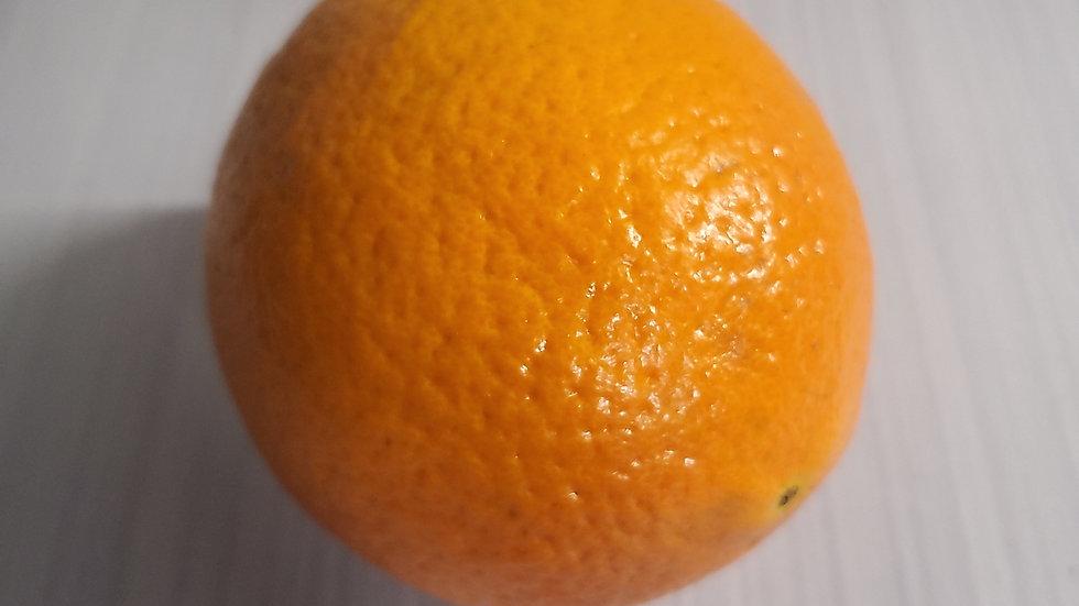 Large Orange (each)