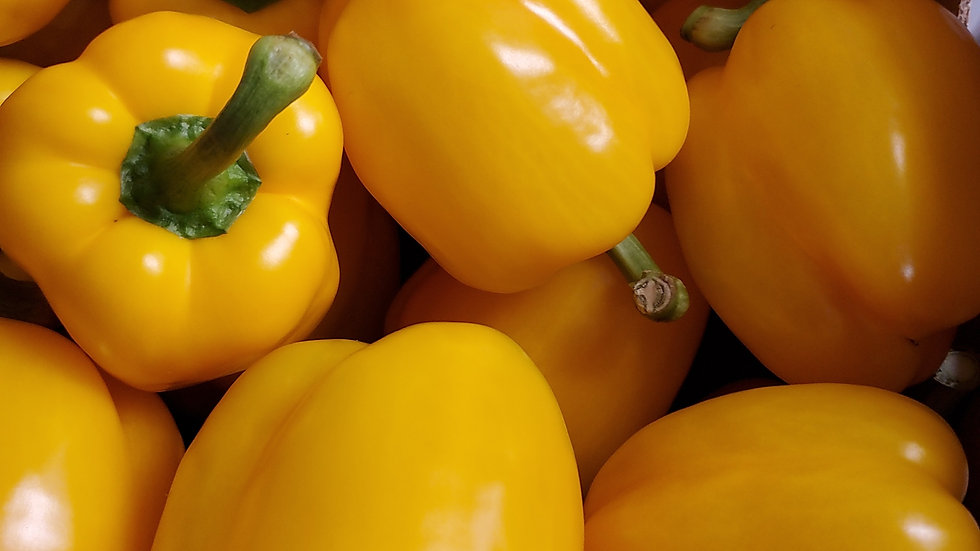 Fresh Yellow Capsicum Sweet Pepper (each)