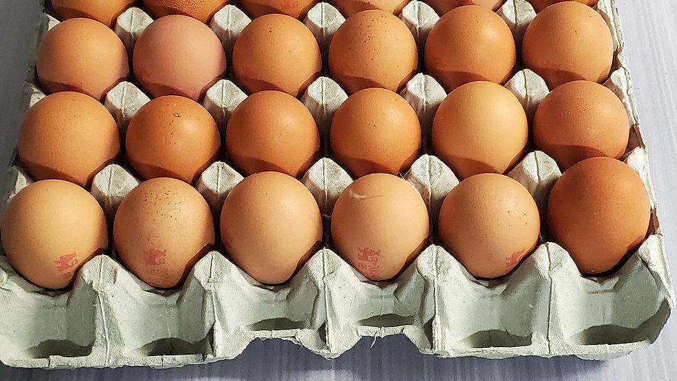 Chapel Farm Eggs Jumbo Size Tray (20 eggs)