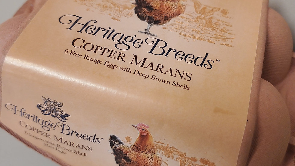 Heritage Breeds Copper Marans 6 Free Range Eggs