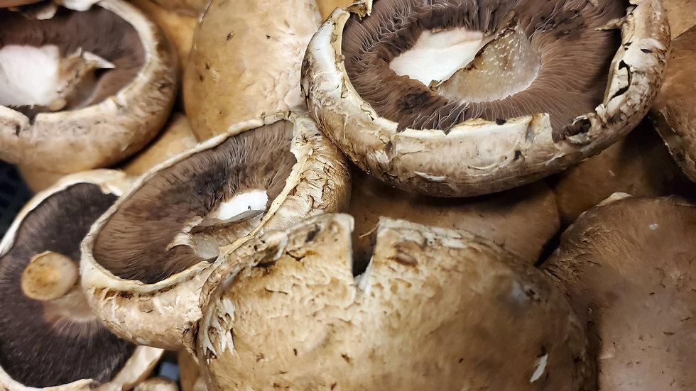 Fresh Portobello Mushrooms (Loose Guide) 500g