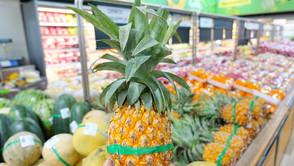 【セブ島で自炊】買い物はUP近所の4カ所使いこなせば大丈夫!
