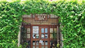アラビカ豆のシベットコーヒー(Civet Coffee)が格安で飲めるカフェ「アバセリア」