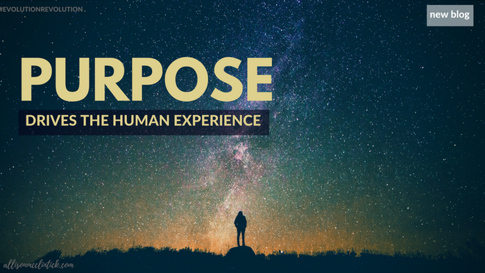 What's Your Purpose? No-really...