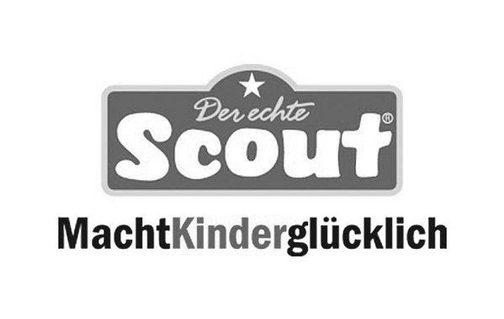 Scout SW.jpg