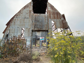 Scary Dairy: An Abandoned Farm Once Operated By Mental Hospital Patients - Camarillo, CA