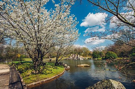 Hasselt_Japanse Tuin.jpg