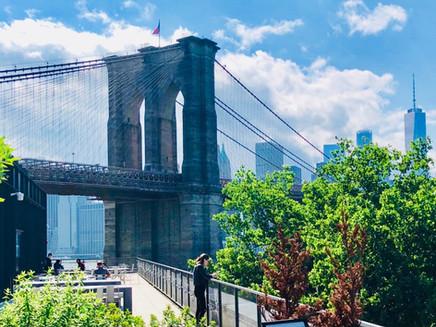 WHATS GOING DOWN UNDER THE MANHATTAN BRIDGE OVERPASS
