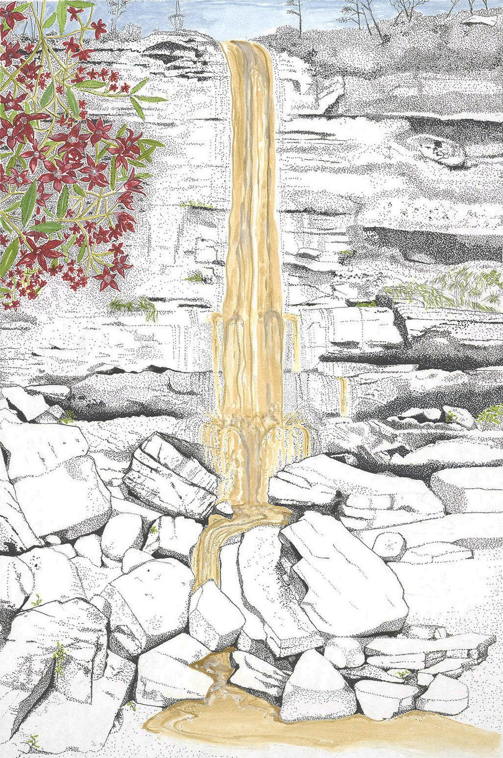 Elvina Falls