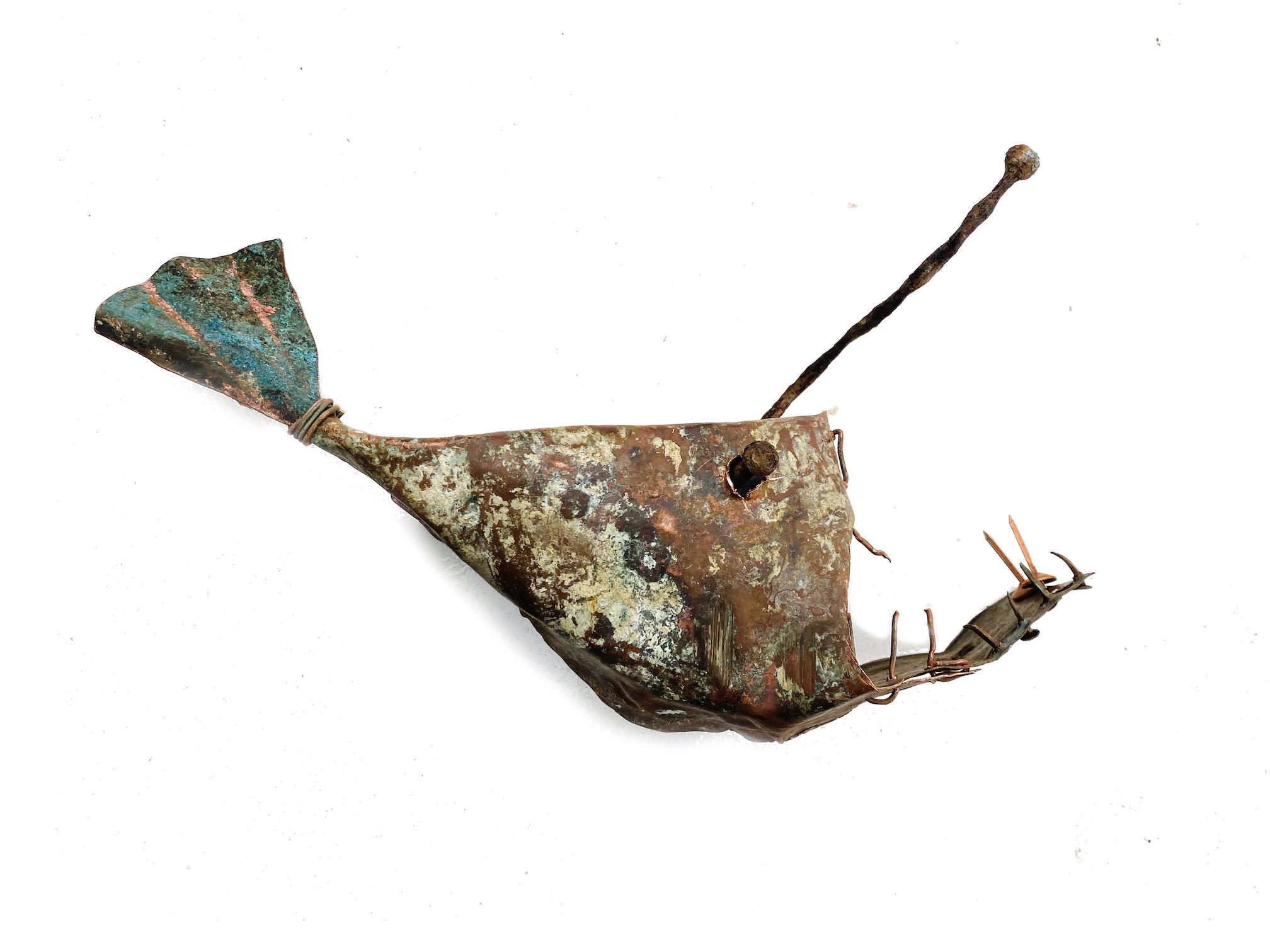 angler fish 1