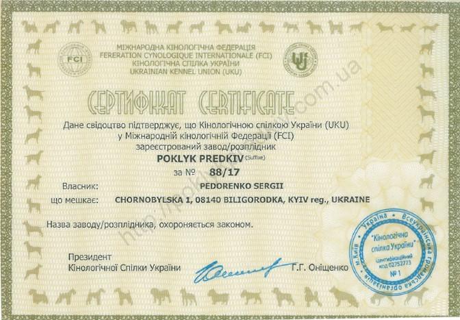Зареєстровано заводську приставку POKLYK PREDKIV