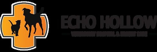 echo hollow logo.png