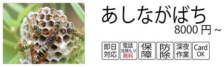 あしながばち料金.jpg