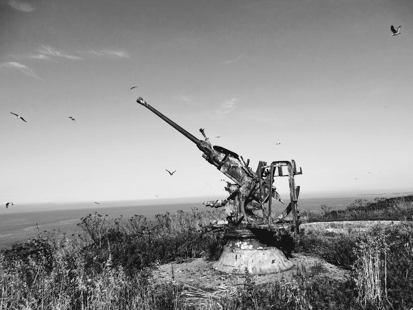 Greg DSC00169 Black & White gun.jpg