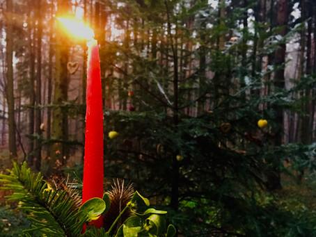 Weihnachten - in Verbundenheit mit der Natur