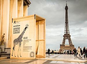Parc Zoologique de Paris Caisses animaux en ville