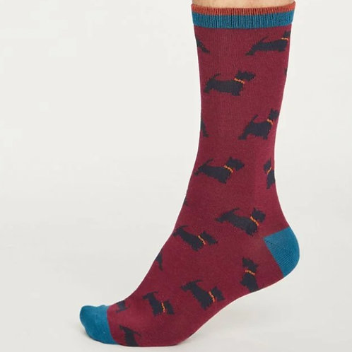 Maroon Scottie dog socks