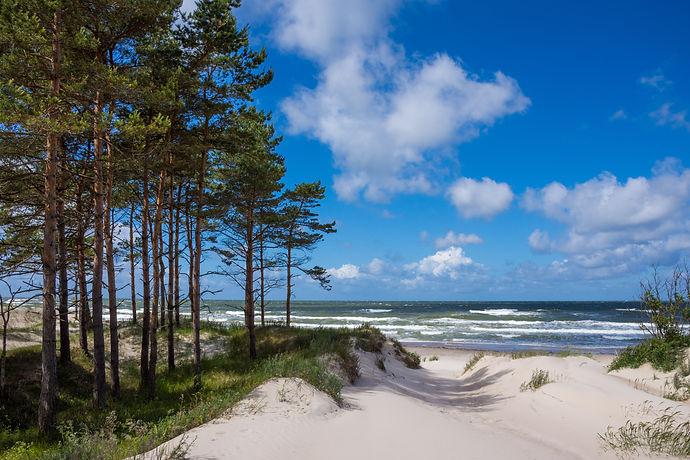 Baltic sea shore in Latvia. Sand dunes w