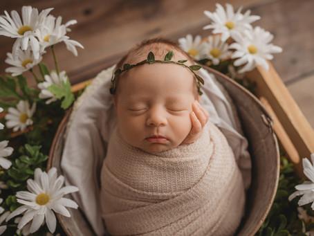 Kansas City Newborn Photographer | Daisy's In-home Newborn Session
