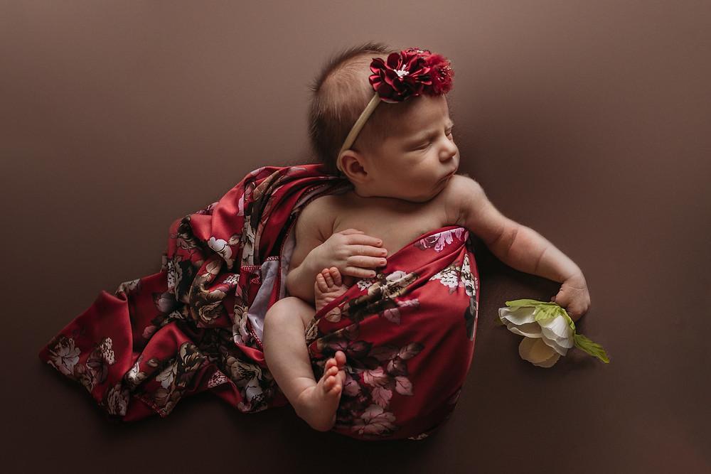 kansas city missouri newborn photographer, kansas city newborn photographer, best kansas city newborn photographer, in-home newborn photography