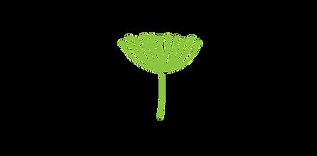 CF-logo-fin.png