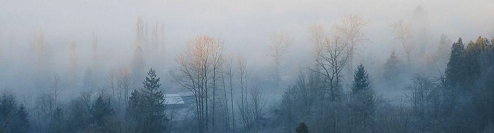 1280px-December_Fog_01.jpg
