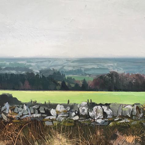 Fields of Wicklow