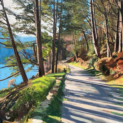 Spinc Trail