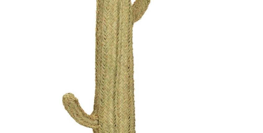 Cactus de esparto Grande