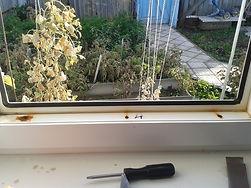 Дренажные отверстия, вода на подоконнике, потеют окна, собирается влага