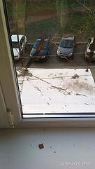 Трещина на стекле, замена стекла, поменять стеклопакет оренбург, конденсат внутри стеклопакета, вода на стекле, потеют окна, текут окна
