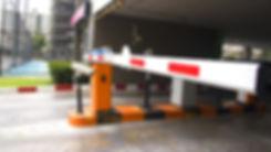 shutterstock_596255159 (Mediano).jpg