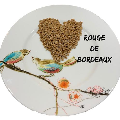 Rouge De Bordeaux Wheat Berries