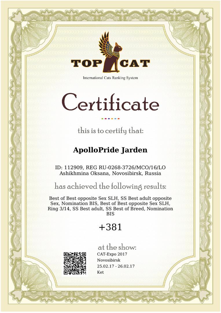 certificate (3)-001.jpg