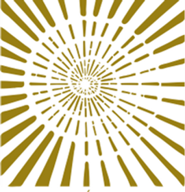 cev logo 3_edited.png